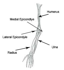 elbow pain treated by physiotherapy