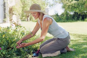 Improve your gardening: 8 best stretches to keep you pruning for longer!